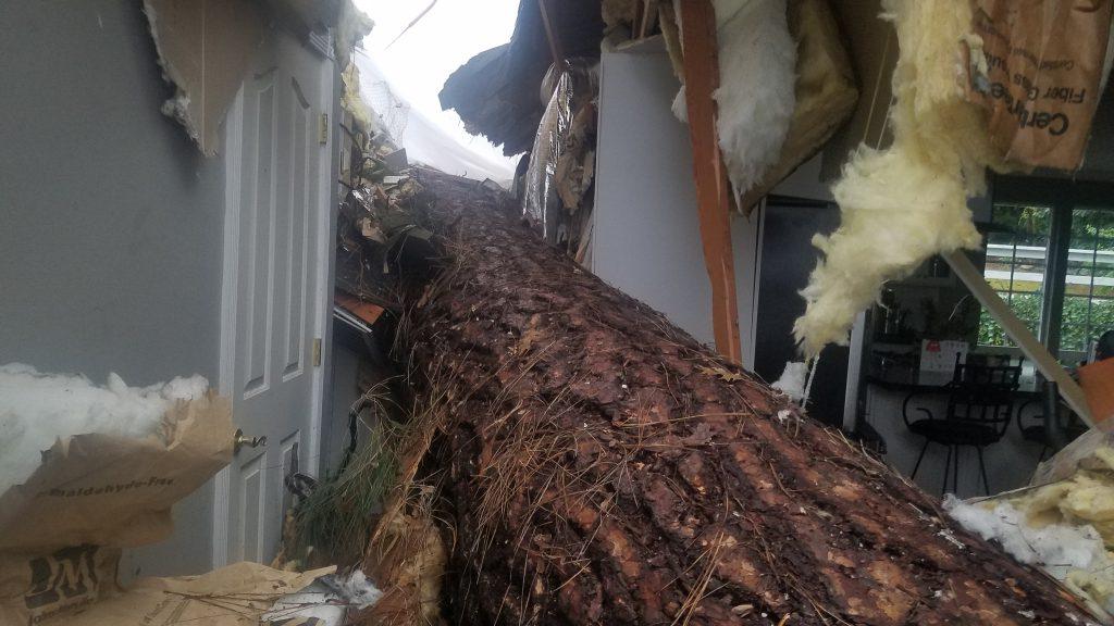 residential disaster repair